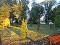 Група вікових дубів Чернігівська область, місто Борзна.jpg