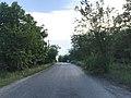 Дніпропетровський район дорога біля Зеленого Гая; 01.06.19.jpg