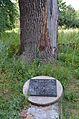 Мар'янське. Колишня садиба Лук'яновича, де жив Т.Г.Шевченко в 1845 р. Пам'ятна дошка біля дубу.jpg