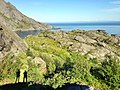 Норвегия - panoramio (127).jpg