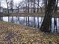 Осенняя позолота..JPG