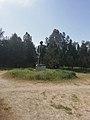 Памятник Мичурину.jpg