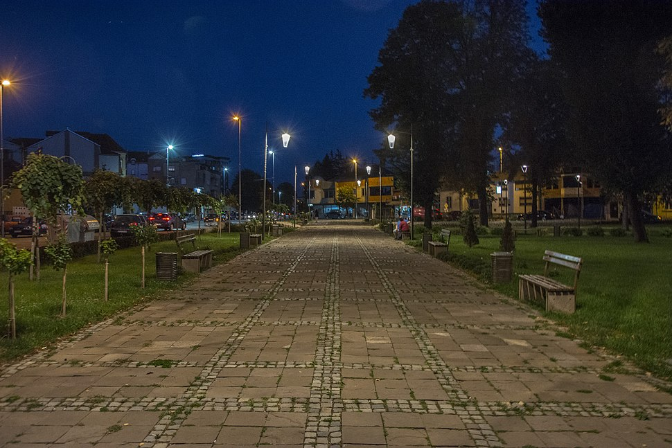 Пирот, градски парк1