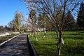 Северинівка, парк садиби Орловських.jpg
