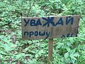 Уважай лес - panoramio.jpg