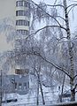 Улица Ленина 19 - panoramio.jpg