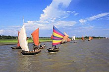 Boats with brightly-coloured sails