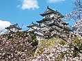 姫路城の桜 (Cherry Blossoms at Himeji Castle) 03 Apr, 2010 - panoramio.jpg