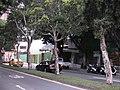 從天母聖安娜天主堂到天母圖書館 - panoramio - Tianmu peter.jpg