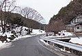 長野県木曽郡木曽町の道 - Mamusi Taka - panoramio (8).jpg