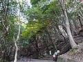 香川県道14-2.jpg