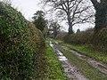 -2021-01-20 Looking north along a farm track, Crostwight, Norfolk.jpg