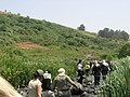 - panoramio - dudi shiler (3).jpg