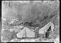 01453 Grand Canyon Historic - Camp at Bright Angel Creek c. 1929 (4738929691).jpg