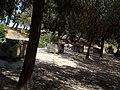 0464 - Siracusa - Tombre romane presso l'anfiteatro - Foto Giovanni Dall'Orto - 21-May-2008.jpg