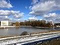 1025.DeHeld.Vinkhuizen.Westpark.Rietvelden.Waterskivijver.Natuur.Watervogels.Eenden.jpg