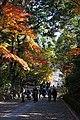 131130 Komyoji Nagaokakyo Kyoto pref Japan05n.jpg
