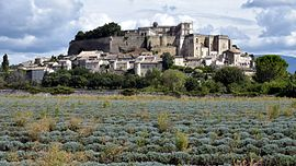 View of Grignan and its castle, with a lavender field in the foreground