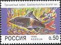 1998. Марка России 0426 hi.jpg
