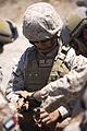1st Marine Division, 3rd Combat Engineer Battalion, Desert Scimitar 2014 140513-M-TJ655-021.jpg