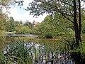 20040622330DR Neetzow Schloß Park.jpg