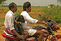 2008 goat on motorbike in India 2833014872.jpg
