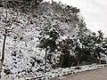 2010年12月15日夜里的那场雪 - panoramio (6).jpg