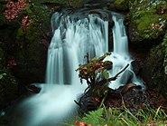 2012-11-16 15-34-20-cascade-savoureuse