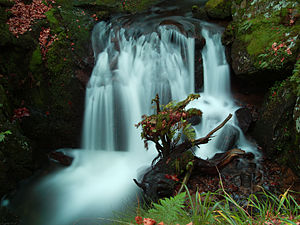 Territoire de Belfort - Image: 2012 11 16 15 34 20 cascade savoureuse