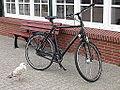 20141005 xl Spiekeroog-Moeve-mit-Rad-am-Hafen-0142.JPG