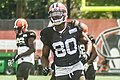2016 Cleveland Browns Training Camp (28076482633).jpg