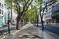 2016 Rúa en Funchal. Madeira. Portugal-65.jpg