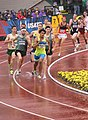 2016 US Olympic Track and Field Trials 2250 (28153026452).jpg