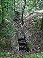 20180522125DR Dohna Naturschutzgebiet Spargrund.jpg