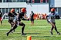 2019 Cleveland Browns Training Camp (48532085056).jpg