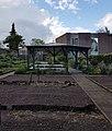 2019 Maastricht, tuin Ursulinenklooster (5).jpg