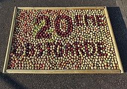 20e Obstgarde en pommes (Elsenheim).jpg