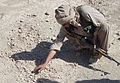 2nd STB soldiers train ALP to detect IEDs DVIDS459856.jpg