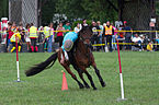 4ème manche du championnat suisse de Pony games 2013 - 25082013 - Laconnex 19.jpg