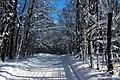500px photo (24227425).jpeg