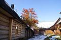 7570vik Wieś Chochołów. Foto Barbara Maliszewska.jpg