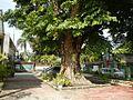 9628ajfTown Proper Pampangafvrf 27.jpg