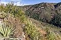 A.B. Young Trail (38624086416).jpg