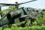 AH-64D Apache - RIAT 2015 (23201006214).jpg