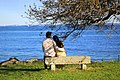 A couple looking at the sea.jpg