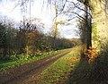 A track near Haigsfield - geograph.org.uk - 284431.jpg