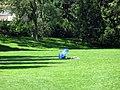 Abandoned picnic spot (928986376).jpg