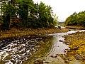 Acadia National Park (8111143091).jpg