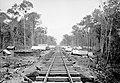 Acampamento ao Longo da Ferrovia Madeira-Mamoré - 669, Acervo do Museu Paulista da USP (cropped).jpg