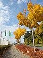 Achenbach, 57072 Siegen, Germany - panoramio (9).jpg